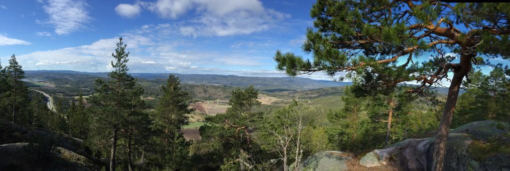 Panoramabilde fra toppen av Hvittingen og løypas høyeste punkt, ca 400 moh.